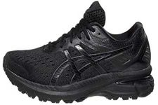ASICS Gt-2000 9 shoe