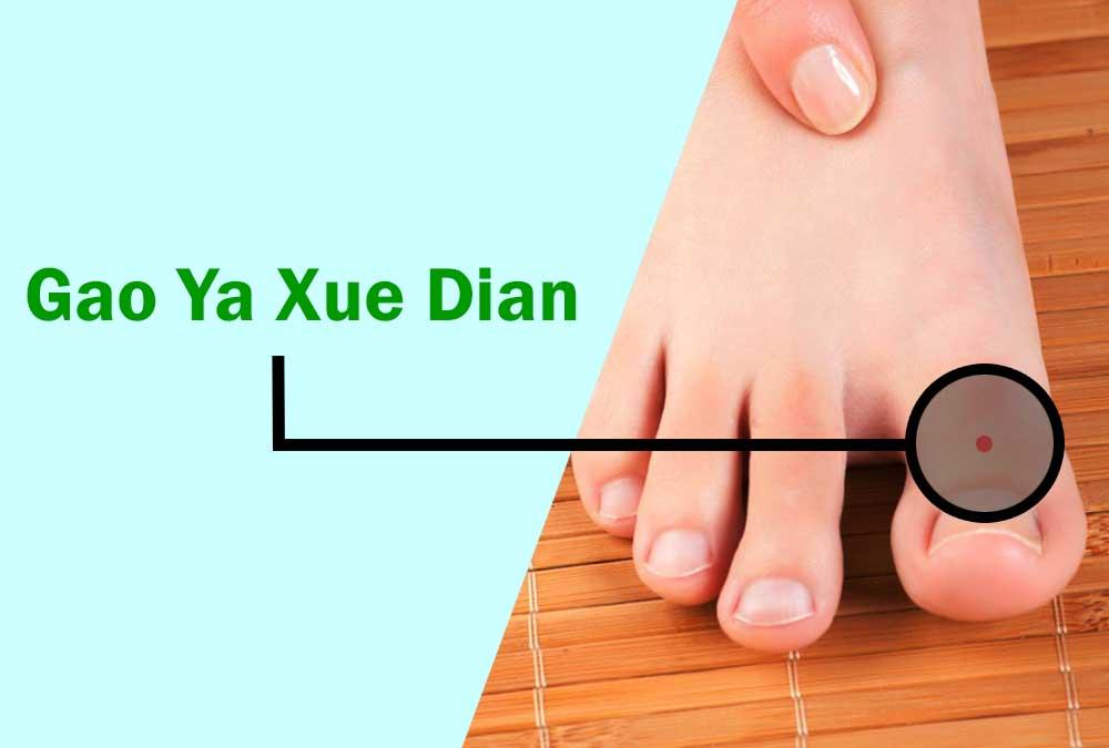 Gao Ya Xue Dian