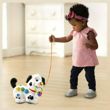 Pull and Sing Puppy Review